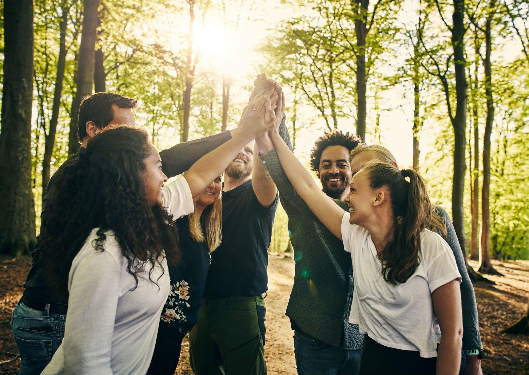 Gruppe a 7 personer giver hinanden high five under teambuilding på Sjælland